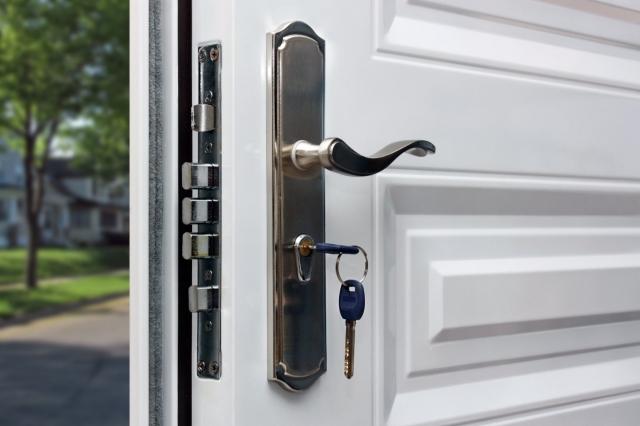 Двери металлические (Сейф-двери) Аргус и Берлога